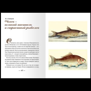 Рыбьи тропы