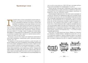 Очерки о естественном газе
